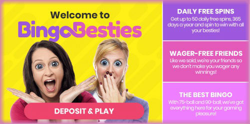 The Welcome Page at Bingo Besties