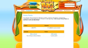 little big bingo promo